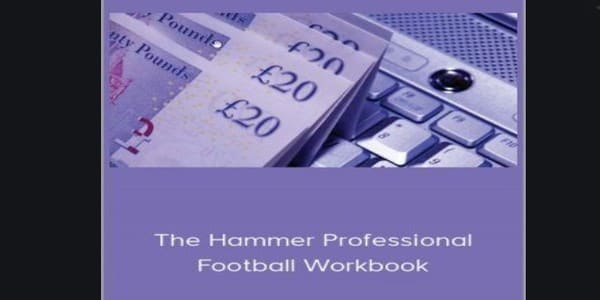 only $42, The Hammer Professional Football Workbook – Ross Mihal